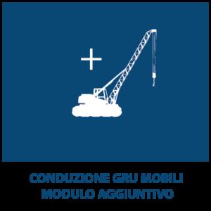 Conduzione gru mobili MODULO AGGIUNTIVO